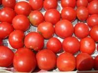 旬の有機トマトジャム
